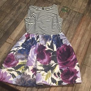Gorgeous taylor dress with pockets